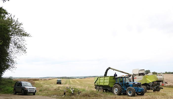 Høstarbejde